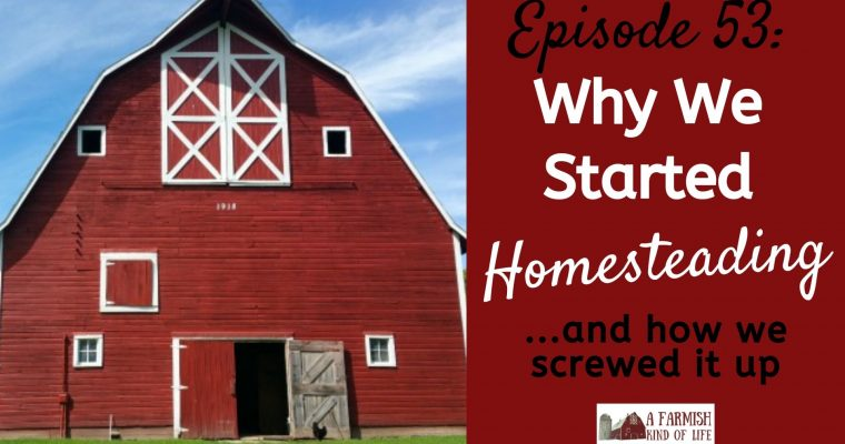 Why We Started Homesteading: Episode 53