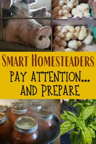 Smart homesteaders pay attention to the right things, and then prepare accordingly. Here are tips on just how to do both of those things.