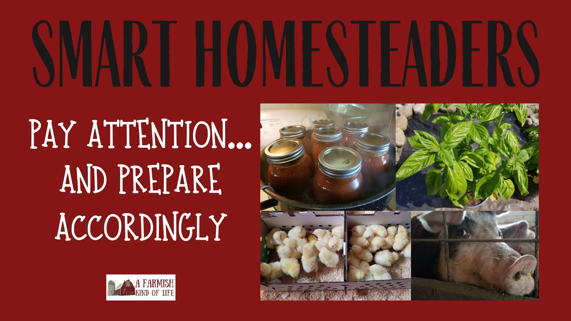 058: Smart Homesteaders Pay Attention…and Prepare Accordingly