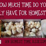 060: Homesteading time assessment