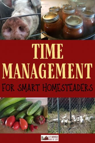 In order to run an effective homestead, you need to manage your time effectively. Here are some of my best tips for homestead time management.
