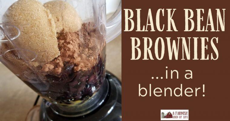 Black Bean Brownies in a Blender