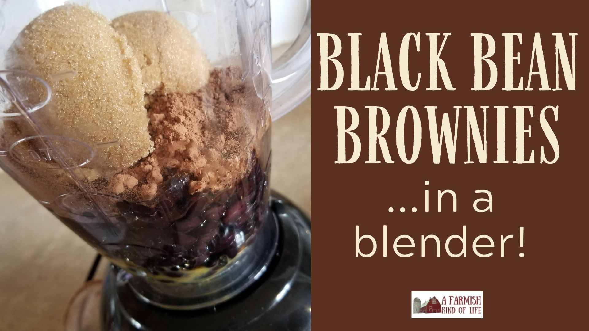 Black Bean Brownies in a Blender