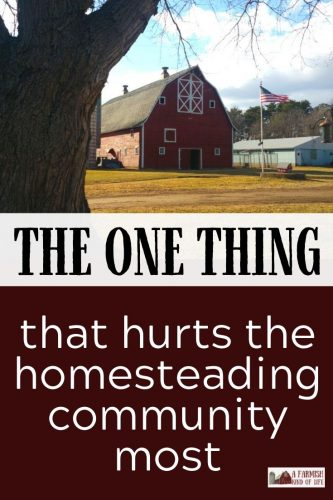 What's the one thing that can hurt the homesteading community most? Let's talk about a common mind trap we get stuck in on the quest to self-reliance.