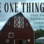 063: The One Thing that Hurts the Homesteading Community Most