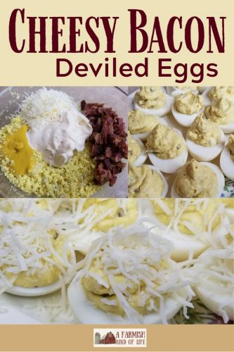 Cheesy Bacon Deviled Eggs is a twist on the usual deviled eggs recipe, adding two of the best things in life: cheese and bacon!