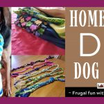 Homemade DIY Dog Toy: Frugal Fun