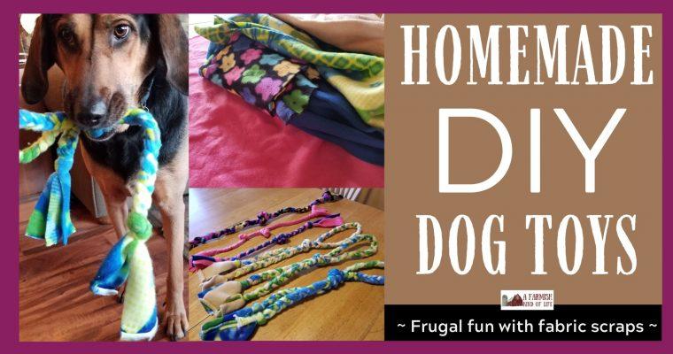 Homemade DIY Dog Toy: Frugal Fun
