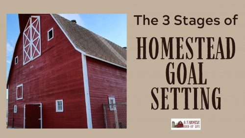 Let's talk about how to work through three stages of homestead goal setting to help you most effectively plan your next year of homesteading awesomeness.