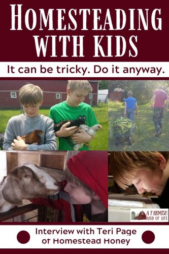 Homesteading with kids can be awesome. It can also be really tricky. Here's why you should do it anyway -- with some tips on how to get stuff done.