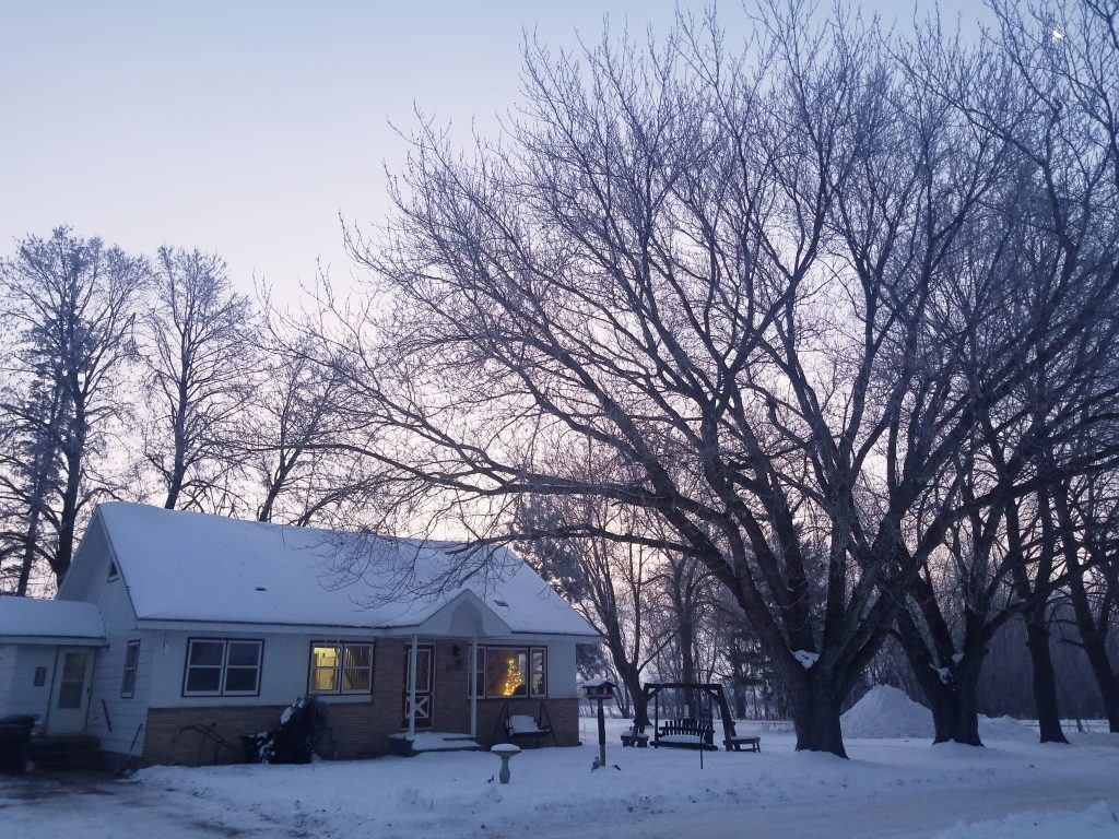 Let's talk about the reality of winter on the homestead, and how it relates to mental health. Why IS winter so hard? It's more than just the lack of sun...