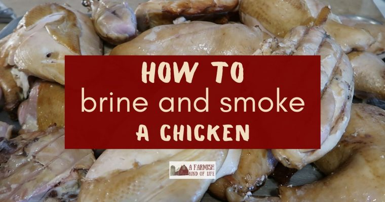 How to Brine and Smoke a Chicken