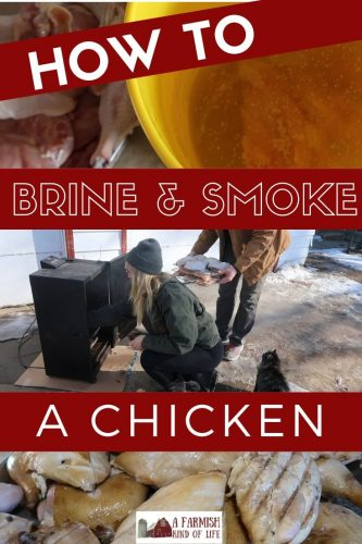 One of our favorite ways to prepare chicken for dinner is to smoke it! Here are the steps we use to smoke and brine a chicken. (This also works for turkey!)