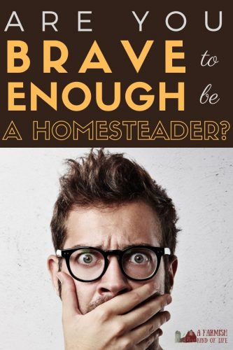Homesteading is no place for cowards! Here are five reasons you will need to bring some courage with to the homestead if you want to get things done.