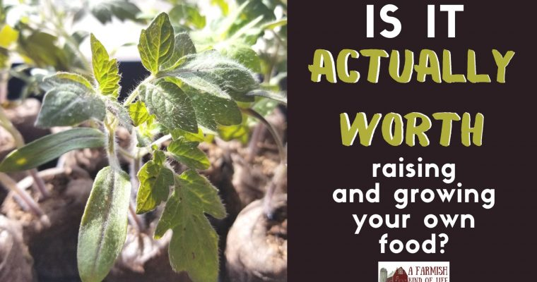 89: Is it really worth it to raise and grow your own food?