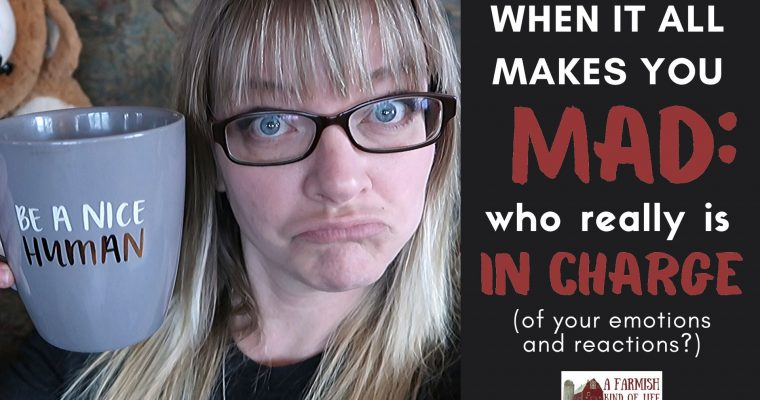 90: when it all makes you mad, who really is in charge?