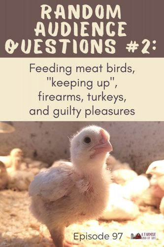 "In today's Random Audience Questions episode, I tackle your questions about feeding meat birds, ""keeping up"", firearms, turkeys, and guilty pleasures."