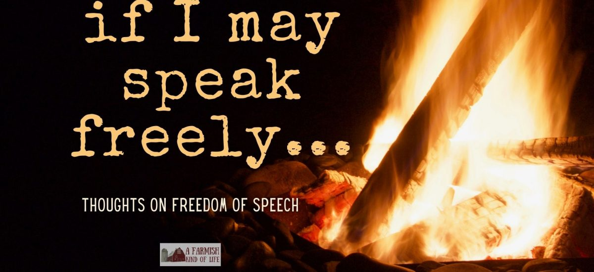 Freedom of speech is a huge topic that's been on my mind lately -- not just because of censorship, but also because of how I'm seeing people react to it.