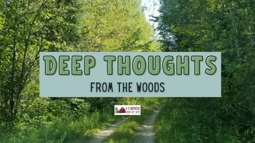 Wherein I offer up my three thoughts I brought back from the deep woods in the hopes maybe one of them will help untangle something in your head, too.