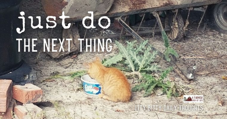 just do the next thing (itty bitty thoughts)