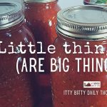 Little Things (itty bitty thoughts)