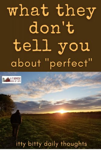 """A little something I learned once about """"perfection"""". It hurt to hear, but it changed my life."""