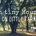 in tiny houses on little farms (itty bitty thought)