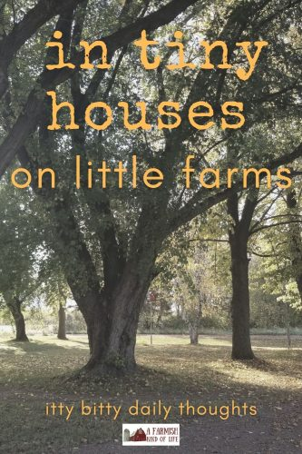 It's strange that people in tiny houses on little farms would care so much about the ins and outs of the daily happenings of people who didn't know tiny houses on little farms existed.