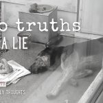 two truths and a lie (itty bitty thoughts)