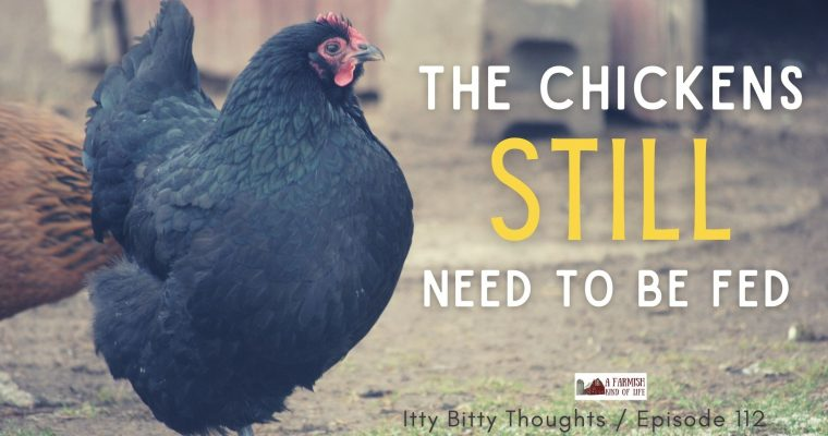 112: The Chickens Still Need to Be Fed