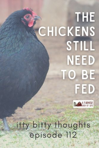 I have no comment on the state of the world, but I do know this: the chickens still need to be fed.