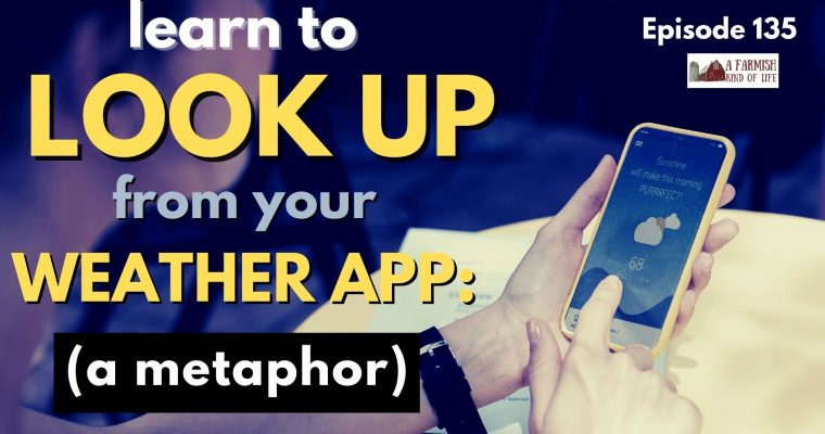 135: Learn to look up from your weather app: a metaphor