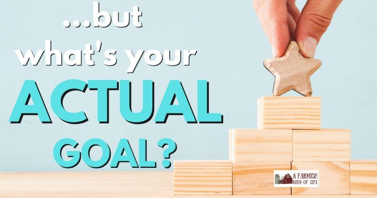 147: But what's your actual goal?