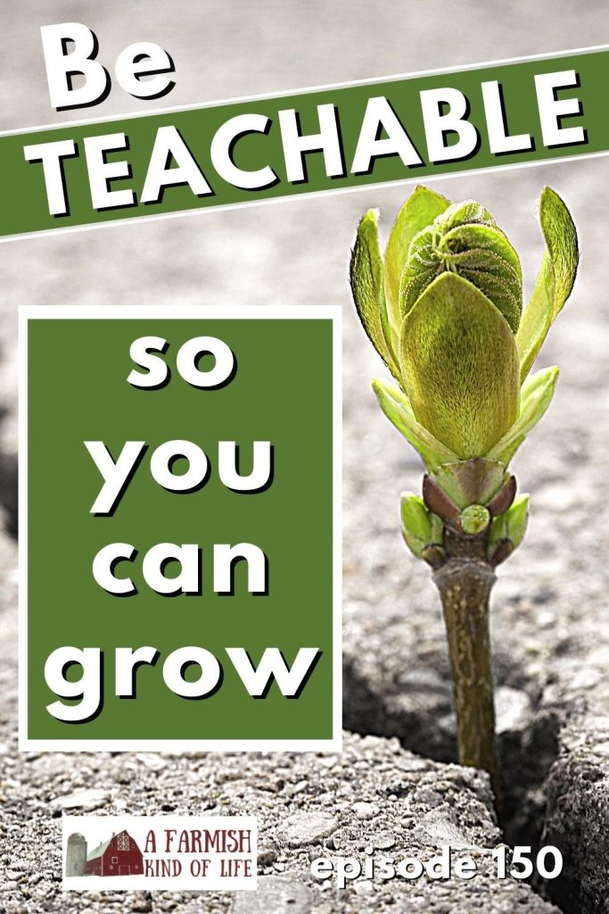 """Plant popping through a crack in the pavement with the words """"be teachable so you can grow"""" written to the left of it."""