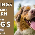 152: 5 Things We Can Learn from Dogs