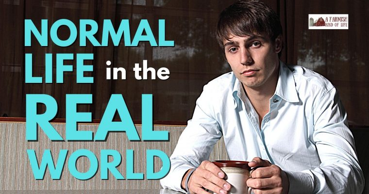 143: Normal life in the real world