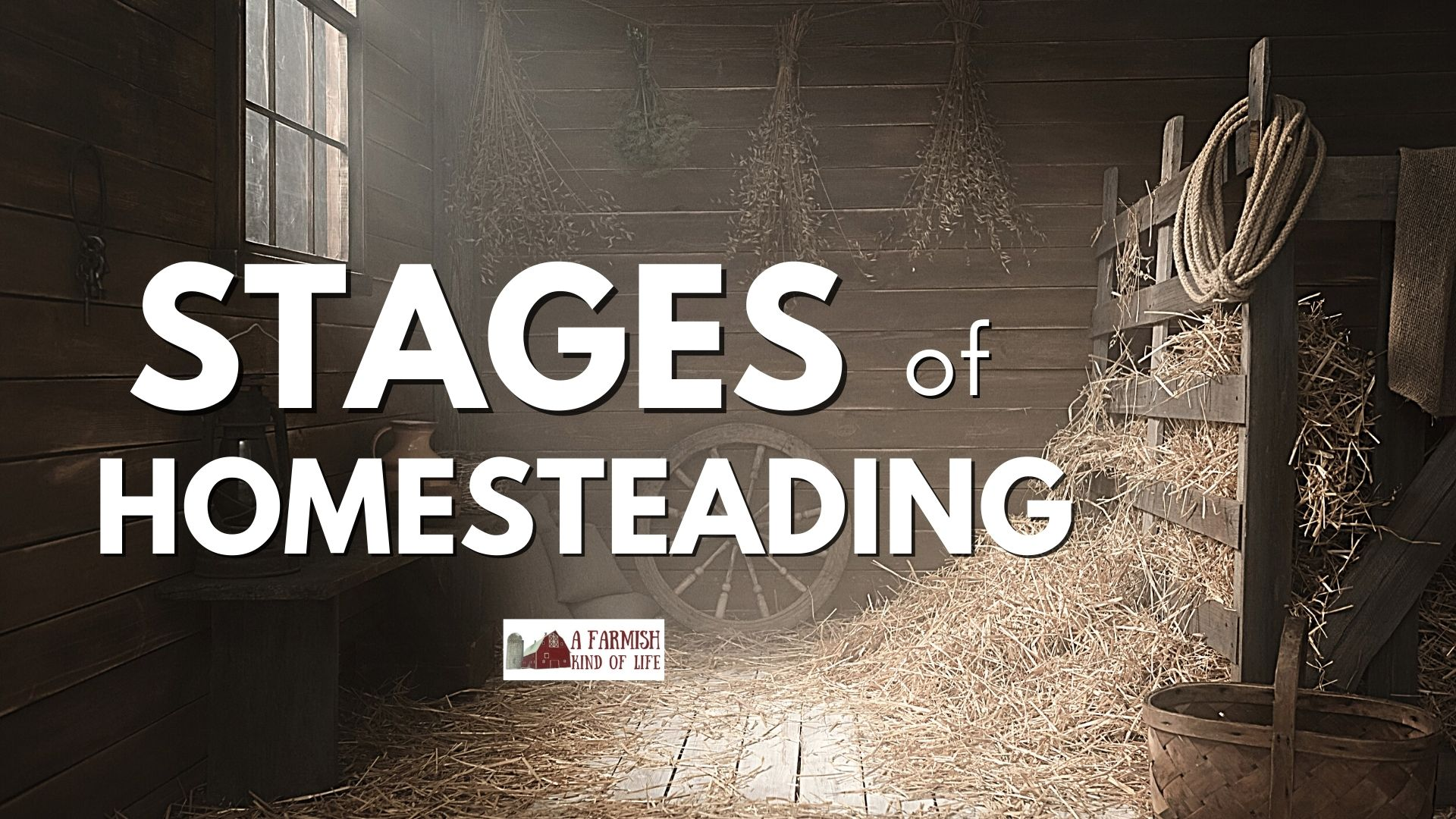 157: Stages of Homesteading