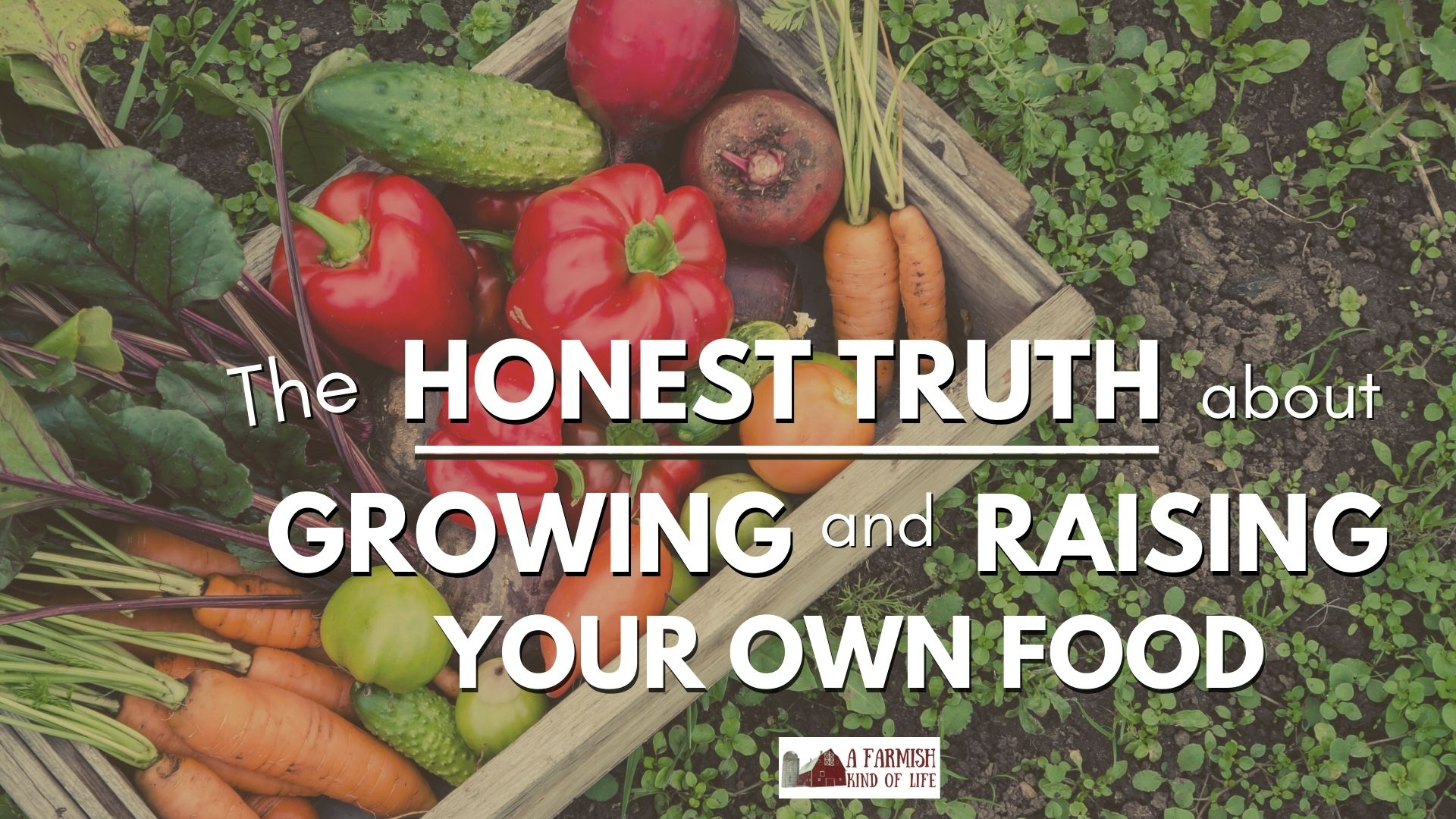 159: The Truth about Growing Your Own Food