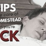 163: 9 Tips for Taking Care of the Homestead When You're Sick